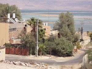 Rose Dead Sea Neve Zohar, Penzióny  Neve Zohar - big - 25