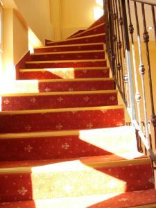 Villa Edel Constanta, Guest houses  Constanţa - big - 25