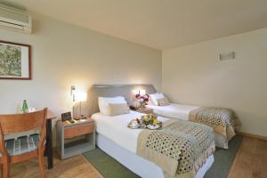 Hotel Eurotel El Bosque, Hotely  Santiago - big - 20