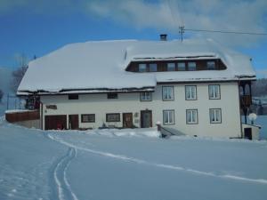 Ferienhof Kammerer, Apartmány  Ibach - big - 32
