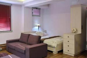 Joan Apartments & Spa, Appartamenti  Skopje - big - 47
