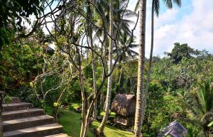 The Kampung Resort Ubud (6 of 62)