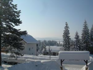 Brvnara Zlatibor, Horské chaty  Zlatibor - big - 11