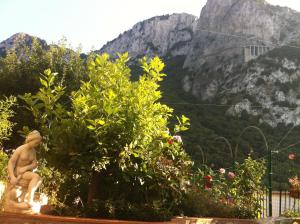 B&B Palazzo a Mare, Bed and breakfasts  Capri - big - 40