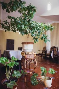 Complex Zolota Pidkova, Hotels  Zolochiv - big - 85