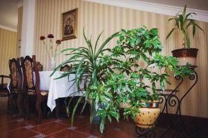 Complex Zolota Pidkova, Hotels  Zolochiv - big - 84