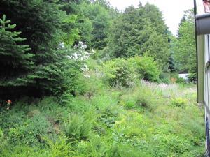 Hof Guttels Waldgasthof Ferienpension, Penzióny  Rotenburg an der Fulda - big - 18