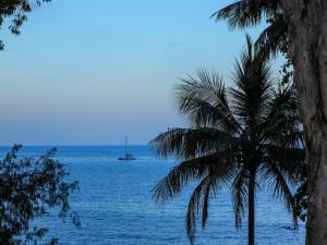 Marlin Waters Beachfront Apartments, Aparthotels  Palm Cove - big - 22