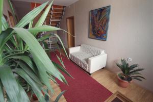 Guest House Via, Pensionen  Bitola - big - 40