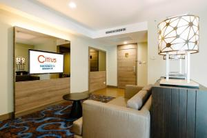 Suite Room with One Complimentary Minibar Set
