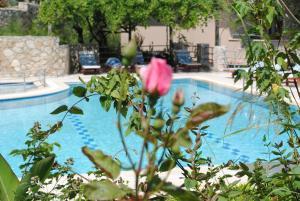 Kleo Cottages, Hotels  Kalkan - big - 58