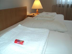 Apartment Horvat, Appartamenti  Zagabria - big - 28