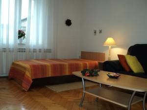 Apartment Horvat, Appartamenti  Zagabria - big - 32