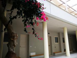 Mina Accomodation, Guest houses  Tropea - big - 37