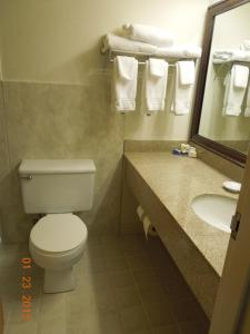 Double Room with Two Double Beds - Disability Access - Non Smoking