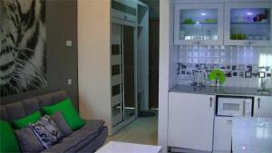 White Tiger in New Gudauri II, Appartamenti  Gudauri - big - 19