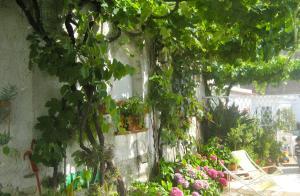 Casa Anna Capri Charme, Apartmanok  Capri - big - 19