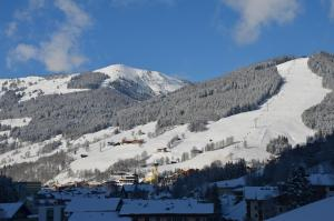 Appartement Gundi Ripper, Apartmány  Saalbach Hinterglemm - big - 21