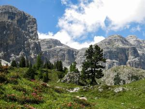 Alpine Mountain Chalet, Chalets  St. Vigil - big - 53