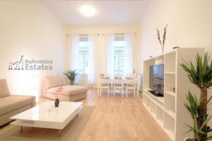 Mánesova Apartment
