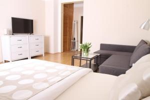 Apartment Moravská, Apartments  Karlovy Vary - big - 14