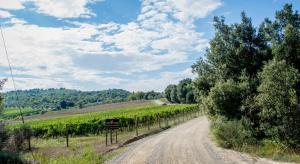 Agriturismo Fattoria Di Gratena, Farmházak  Pieve a Maiano - big - 71