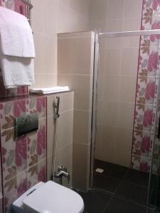 Hotel Сomplex Ak-Zhaik, Hotely  Karagandy - big - 29