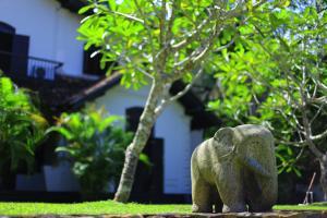 Galle Henna Estate, Rezorty  Unawatuna - big - 15