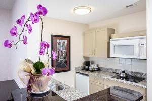Premium Studio Suite with Kitchenette
