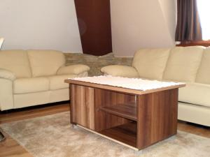 White Coffee Apartment, Apartmány  Kopaonik - big - 20