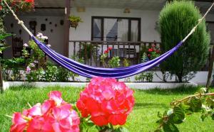 Casa Macondo Bed & Breakfast, B&B (nocľahy s raňajkami)  Cuenca - big - 47
