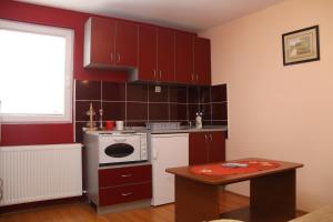 Apartments Katarina, Appartamenti  Zlatibor - big - 34