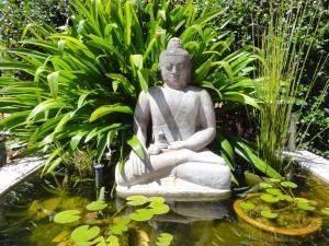 Vatu Sanctuary (3 of 28)