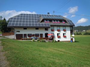 Ferienhof Kammerer, Apartmány  Ibach - big - 34