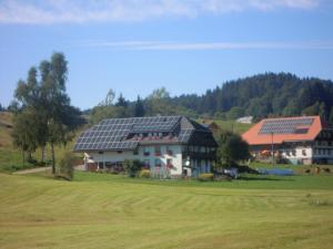 Ferienhof Kammerer, Apartmány  Ibach - big - 25