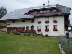 Ferienhof Kammerer, Apartmány  Ibach - big - 33