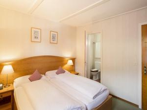 Hotel Bernerhof Grindelwald, Hotely  Grindelwald - big - 8