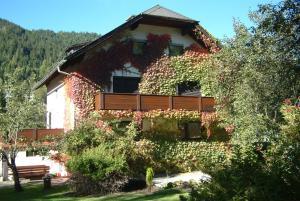 Appartements Hötzendorfer, Apartmány  Schladming - big - 42