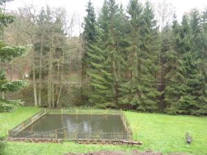 Hof Guttels Waldgasthof Ferienpension, Penzióny  Rotenburg an der Fulda - big - 64
