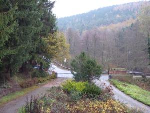 Hof Guttels Waldgasthof Ferienpension, Penzióny  Rotenburg an der Fulda - big - 70