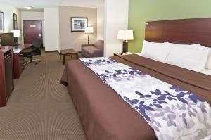 Sleep Inn & Suites Bush Intercontinental - IAH East, Отели  Хамбл - big - 11