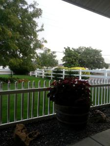 The Bookcliffs Bed & Breakfast, Bed and breakfasts  Grand Junction - big - 5