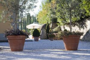 Relais Villa Belvedere, Apartmánové hotely  Incisa in Valdarno - big - 144