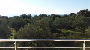 Olive Apartments, Apartmány  Ugljan - big - 11