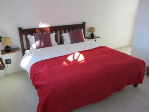 Двухместный номер-люкс с 1 кроватью