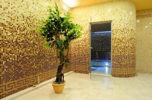Hotel i Restauracja Bona, Hotely  Sanok - big - 54