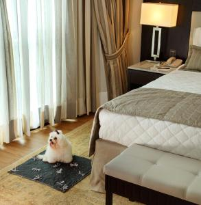 Miramar Hotel by Windsor (8 of 44)