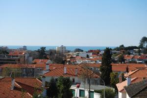 Porto Serralves Apartment