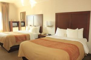 Comfort Inn Elko, Hotels  Elko - big - 8