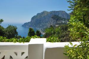 Villa Mariuccia Capri, Apartmanok  Capri - big - 21
